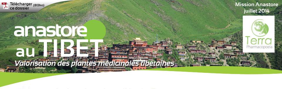 Anastore au Tibet - Valorisation des plantes médicinales tibétaines