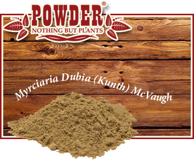 POWDER - CAMU-CAMU