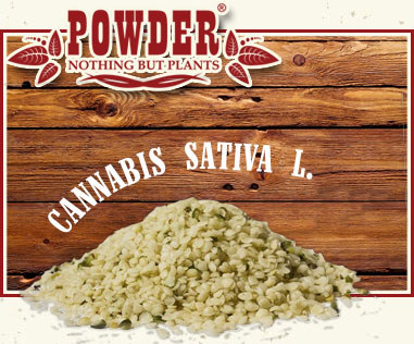 POWDER - GRAINES DE CHANVRE BIO