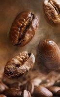 Votre boisson protéinée du matin à l'authentique café Arabica