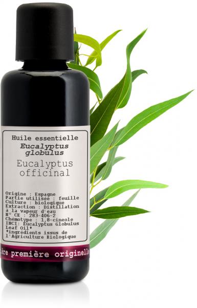 Huile essentielle Eucalyptus officinal Bio